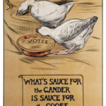 What is Sauce for the Goose is Sauce for the Gander
