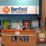 Banfield PetSmart Store Near Me - Superior Medical Care For Pets