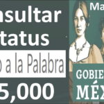 Verificar Credito Bienestar Gob Mx: Financial Support by Mexican Social Security Institute